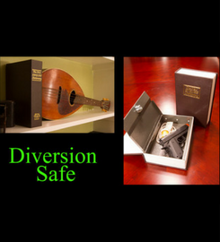 Diversion Safe